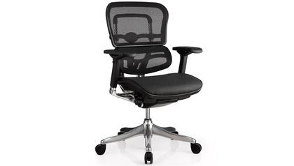 Ergo Elite Mesh Back/Seat Swivel Chair