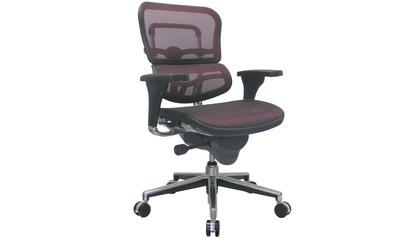 Ergo Human Mesh Swivel Chair California Mesh