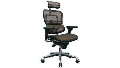 Ergo Human Mesh Swivel Chair with Headrest