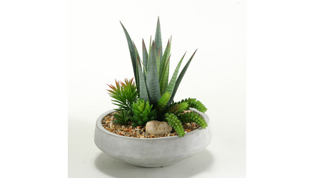 Agave and Mixed Succlents in Concrete Round Planter