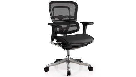 Ergo Elite Mesh Back/Seat Swivel Chair