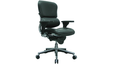 Ergohuman Leather Swivel Chair