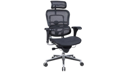 Ergo Human Mesh Swivel Chair with Headrest