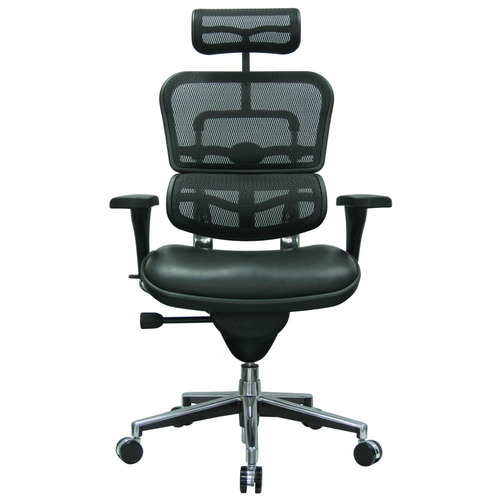 Ergohuman Leather Seat Swivel Chair with Headrest Mesh Back