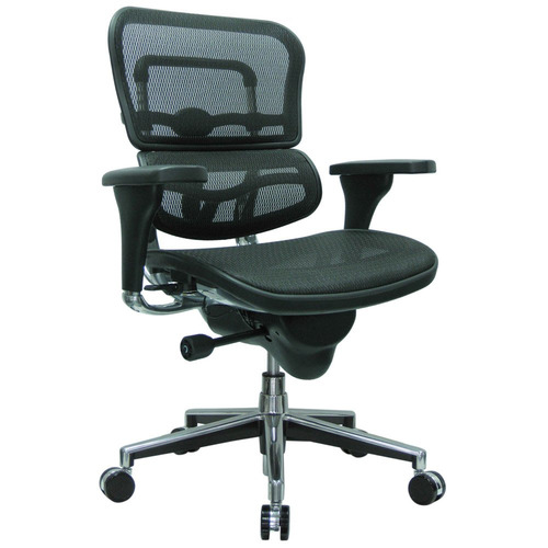 Ergohuman Leather Seat Swivel Chair with Mesh Back