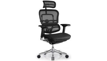 Ergo Elite Mesh Swivel Chair with Headrest