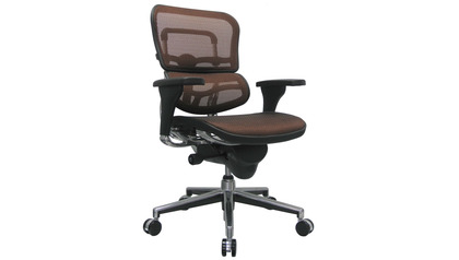 Ergohuman Mesh Back & Seat Swivel Chair