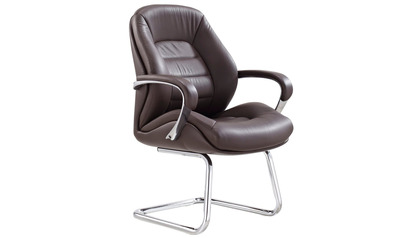 Gates Leather Guest Chair