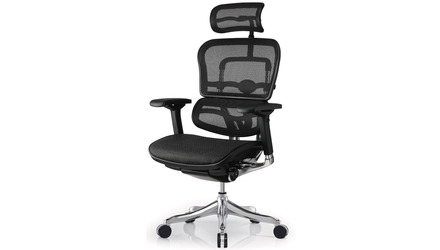 Ergo Elite Mesh Swivel Chair with Headrest