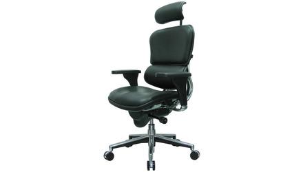 Ergohuman Leather Swivel Chair with Headrest