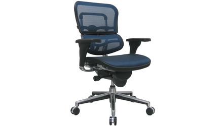 Ergohuman Mesh Back & Seat Swivel Chair